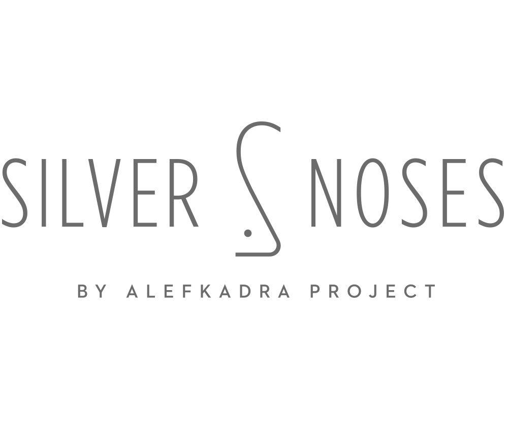 Silvernoses Branding 1